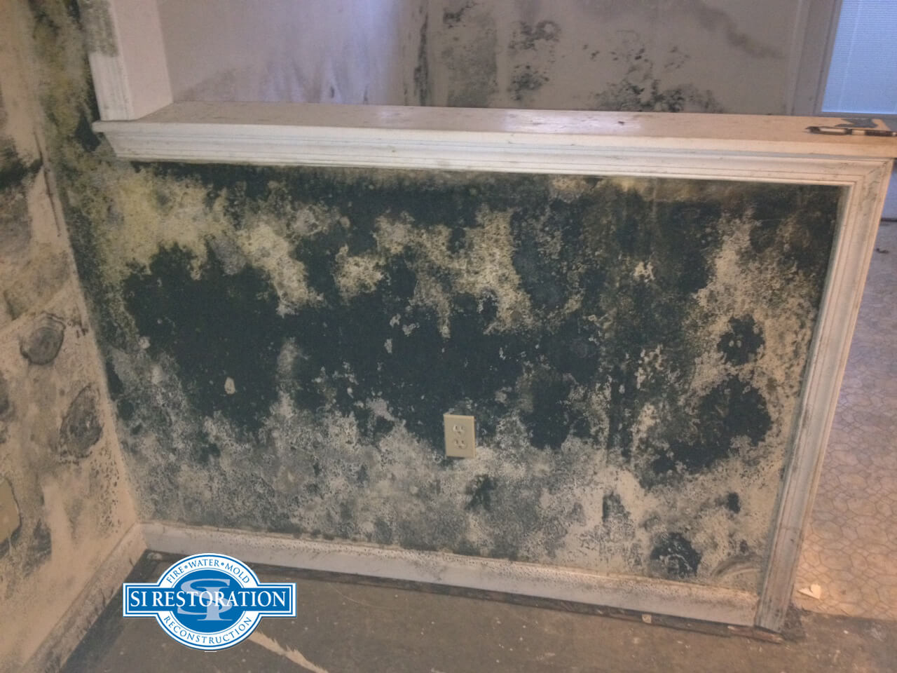 Costs Ociated With Mold And Mildew Removal