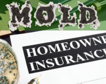 Mold and Insurance